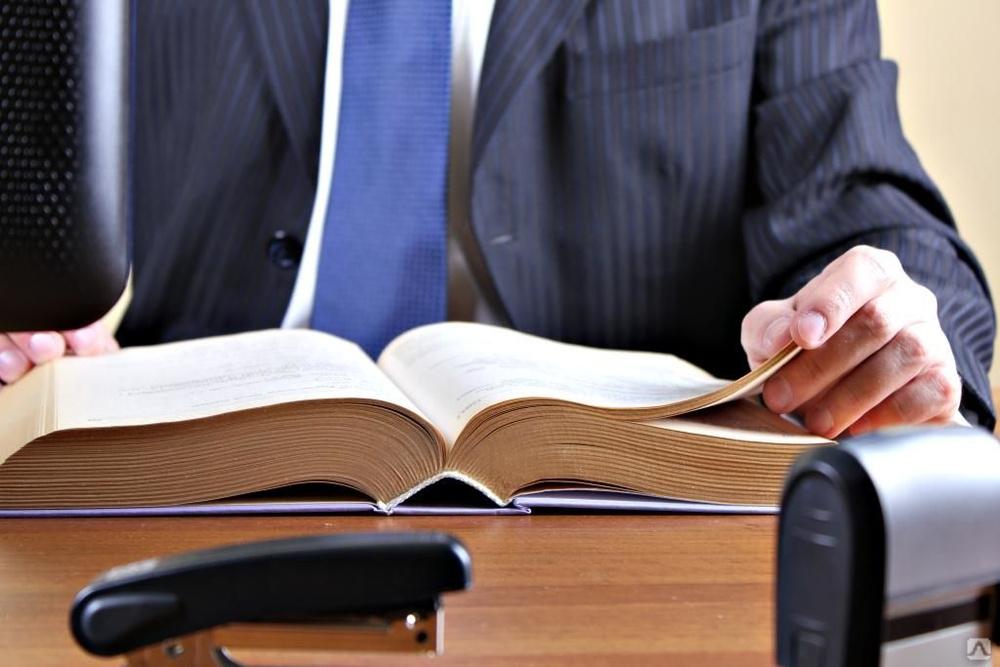 судебные дела по ип и ооо